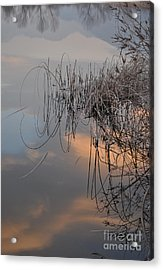 Balance Of Elements Acrylic Print