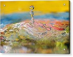 Balancing Act Acrylic Print by Lisa Knechtel