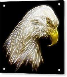Bald Eagle Fractal Acrylic Print by Adam Romanowicz