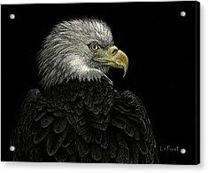American Bald Eagle Acrylic Print by Sandra LaFaut