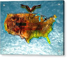 Bald Eagle U.s. Map Acrylic Print by Daniel Janda