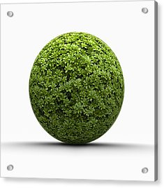 Ball Of Leaves Acrylic Print by Jorg Greuel