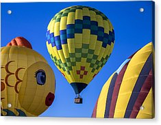 Ballooning Acrylic Print by Garry Gay
