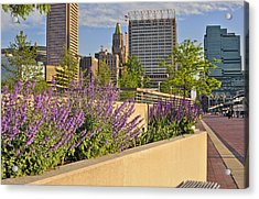 Baltimore Inner Harbor With Flowers Acrylic Print by Marianne Campolongo