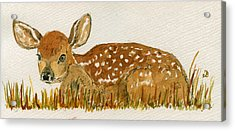 Bambi Deer Acrylic Print