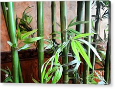 Acrylic Print featuring the photograph Plant -  Bamboo  -  Luther Fine Art by Luther Fine Art