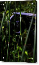 Bamboo And A Bench Acrylic Print by Tara Miller