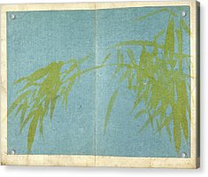 Bamboo Acrylic Print by British Library