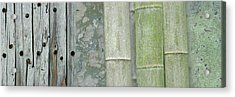 Bamboo Acrylic Print by Cora Niele