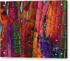 Bamboo Delight Acrylic Print