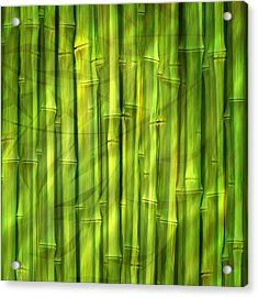 Bamboo Dream Acrylic Print
