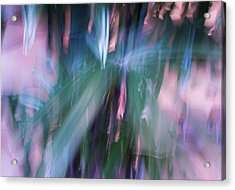 Acrylic Print featuring the photograph Bamboo Explosion by Beverly Parks