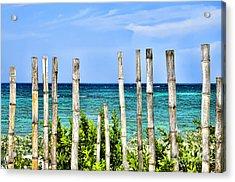 Bamboo Fence Acrylic Print by Keith Ducker