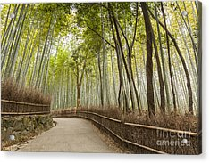 Bamboo Forest Arashiyama Kyoto Japan Acrylic Print by Colin and Linda McKie