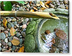 Bamboo Fountain Acrylic Print by Michelle Wolff
