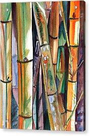 Bamboo Garden Acrylic Print