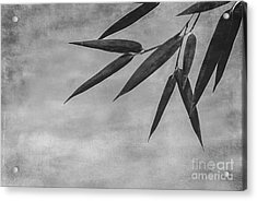 Bamboo - Gray Acrylic Print by Hannes Cmarits