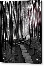 Bamboo Grove At Dusk Acrylic Print by Larry Knipfing