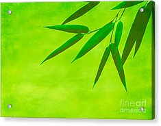 Bamboo Leaves Acrylic Print by Hannes Cmarits
