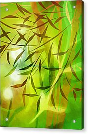 Bamboo Light Acrylic Print by Lutz Baar