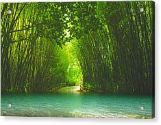bamboo path to  Blue Lagoon  Acrylic Print by Dennis Baswell