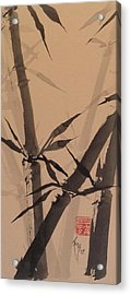 Bamboo Study #1 On Tagboard Acrylic Print by Robin Miller-Bookhout