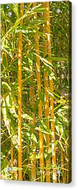 Bamboo Vertical Acrylic Print by Christina Rahm