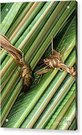 Banana Leaves Acrylic Print by Rick Piper Photography
