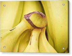 Bananas Acrylic Print by Tom Gowanlock