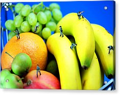Band Of Brothers Among Fruits Jungle Little People On Food Acrylic Print by Paul Ge