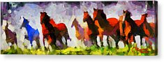 Band Of Horses Tnm Acrylic Print by Vincent DiNovici
