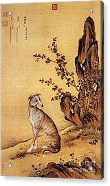Banjinbiao - Chinese Royal Dog Acrylic Print