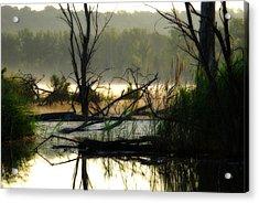 Banner Marsh Spring Acrylic Print