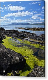 Bantry Bay In August Acrylic Print