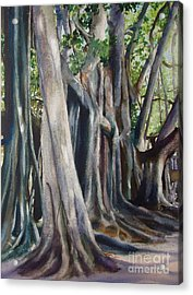 Acrylic Print featuring the painting Banyan Trees by Karol Wyckoff