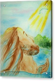 Baptism Of Christ Acrylic Print by Melanie Palmer