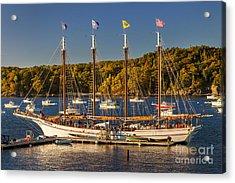 Bar Harbor Schooner Acrylic Print by Brian Jannsen