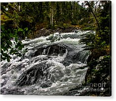 Baranof River Acrylic Print by Robert Bales