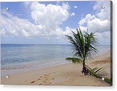 Barbados Beach Acrylic Print by Willie Harper