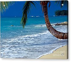 Barbados Beauty Acrylic Print by Sophie Vigneault
