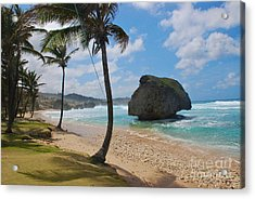 Barbados Acrylic Print by Blake Yeager