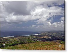Barbados Countryside And The Sea Acrylic Print by Willie Harper