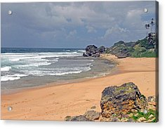 Barbados Countrysiide Meets The Ocean Acrylic Print by Willie Harper