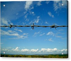 Acrylic Print featuring the photograph Barbed Sky by Nina Ficur Feenan