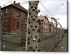 Acrylic Print featuring the photograph Barbed by Steve Godleski