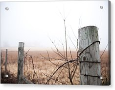 Barbed Wire Fence In The Fog Acrylic Print