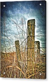 Barbwire Fences Acrylic Print