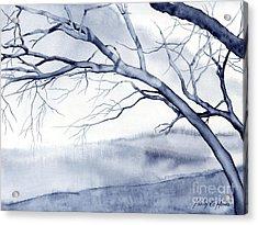 Bare Trees Acrylic Print by Hailey E Herrera