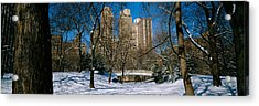 Bare Trees With Buildings Acrylic Print by Panoramic Images