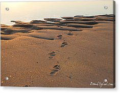 Acrylic Print featuring the photograph Barefoot In Sand by Robert Banach